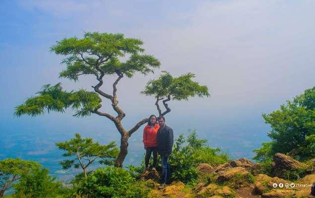 Nelliyampathy Hills, Forest Stay in Palakkad, Kerala | Tripjodi