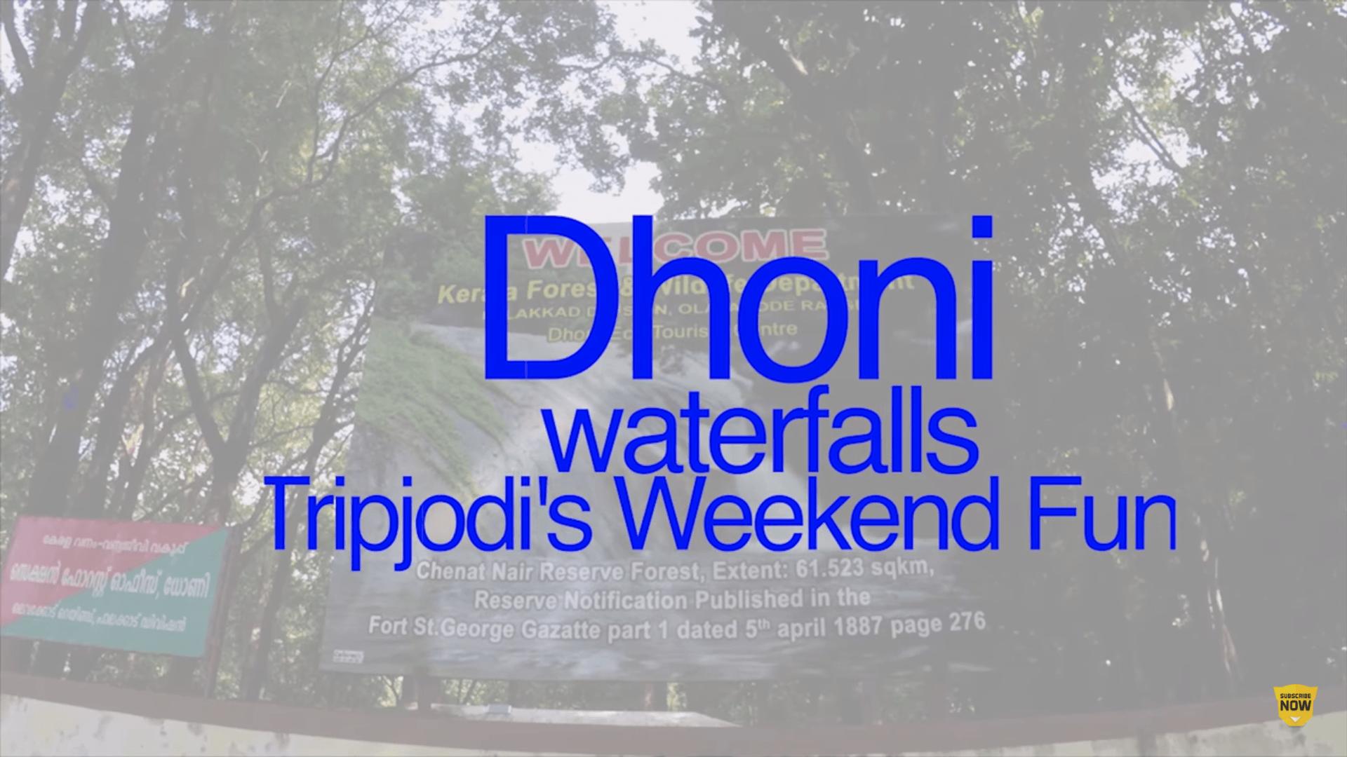Dhoni Falls, Palakkad, Kerala – Tripjodi 's Weekend Fun Trek