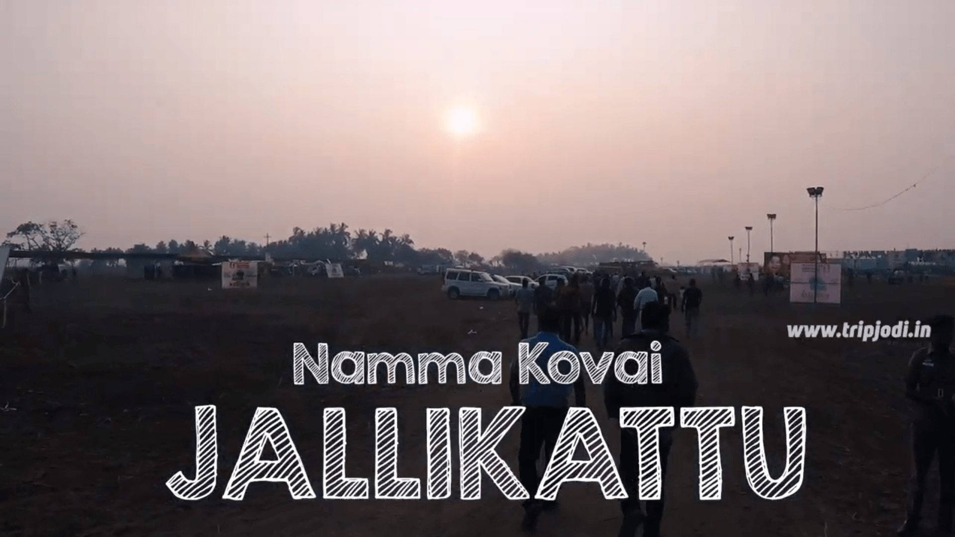 Namma Kovai  Jallikkattu | Tripjodi Travel Stories