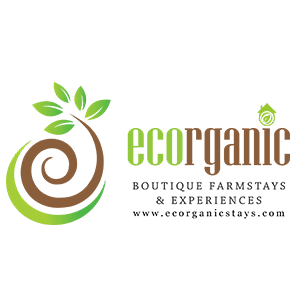 Ecorganic Stays