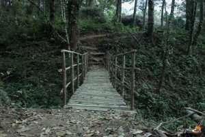 Room-jacuzzi-Honeymoon-Kerala Munnar_elixir Hills_Tripjodi